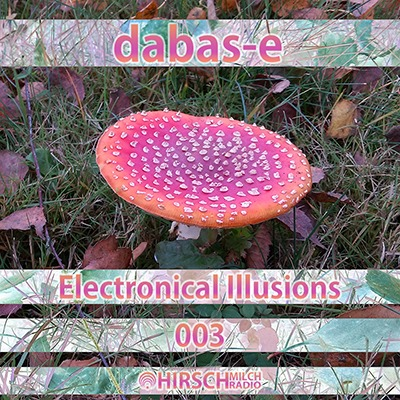 Electronical Illusions 003
